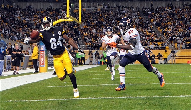 Wide receiver one hand catch steelers wide receiver