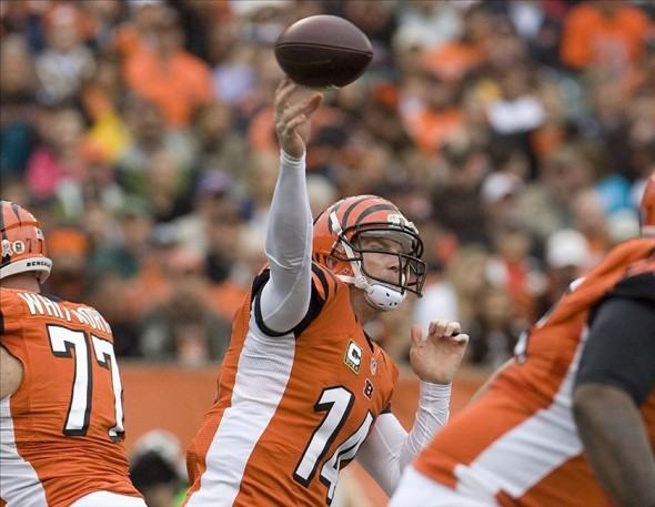 Nov 17, 2013; Cincinnati, OH, USA; Cincinnati Bengals quarterback Andy Dalton (14) passes the ball against the Cleveland Browns at Paul Brown Stadium. Mandatory Credit: Mark Zerof-USA TODAY Sports