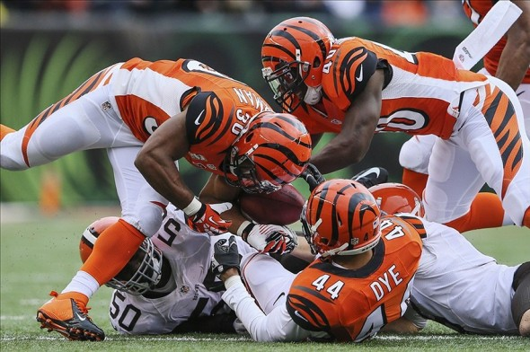 Nov 17, 2013; Cincinnati, OH, USA; Cincinnati Bengals safety Tony Dye (44) recovers a blocked punt and scores a touchdown during the first half against the Cleveland Browns at Paul Brown Stadium. Mandatory Credit: Kevin Jairaj-USA TODAY Sports