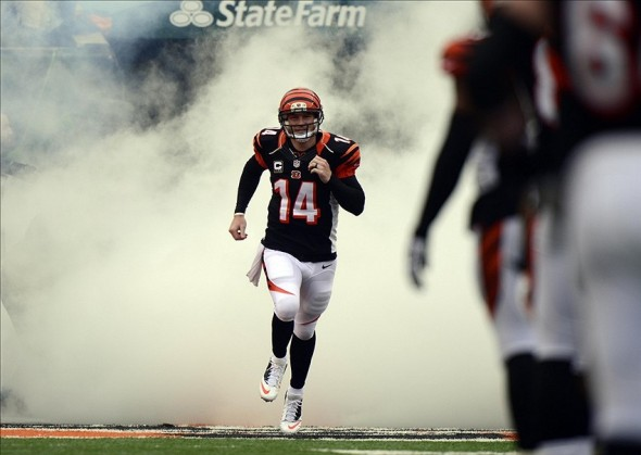 Dec 22, 2013; Cincinnati, OH, USA; Cincinnati Bengals quarterback Andy Dalton (14) is introduced to the crowd while running onto the field before the game against the Minnesota Vikings at Paul Brown Stadium. Mandatory Credit: Marc Lebryk-USA TODAY Sports