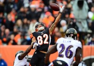 Dec 29, 2013; Cincinnati, OH, USA; Cincinnati Bengals wide receiver Marvin Jones (82) makes a catch for a touchdown a during the second quarter against the Baltimore Ravens at Paul Brown Stadium. Mandatory Credit: Andrew Weber-USA TODAY Sports
