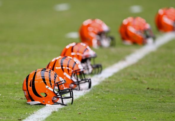 nfl fan dating site Is ochocinco really creating an nfl dating site just what we need, an nfl dating site from ochocinco may 16, 2012   by.