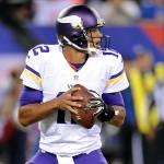 Oct 21, 2013; East Rutherford, NJ, USA; Minnesota Vikings quarterback Josh Freeman (12) drops back to pass against the New York Giants during the first half at MetLife Stadium. Mandatory Credit: Joe Camporeale-USA TODAY Sports