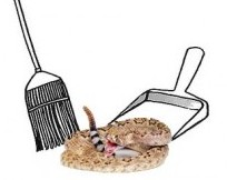 Sweep-the-D-backs