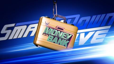 Image result for Womens MITB ladder match being planned for MITB PPV