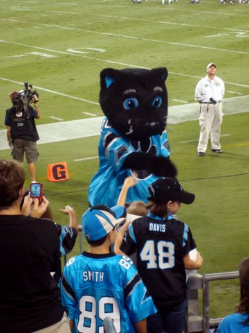 Sir Purr Dancing to the Music