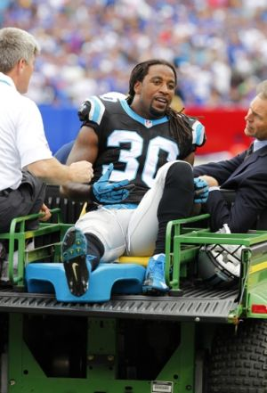 Sep 15, 2013; Orchard Park, NY, USA; Carolina Panthers strong safety Charles Godfrey (30) gets taken off the field with a injury during the second half against the Buffalo Bills at Ralph Wilson Stadium. Buffalo beats Carolina 27 to 26. Mandatory Credit: Timothy T. Ludwig-USA TODAY Sports