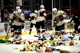 Rockford players clean up after Teddy Bear toss night. picture courtesy: www.flickr.com
