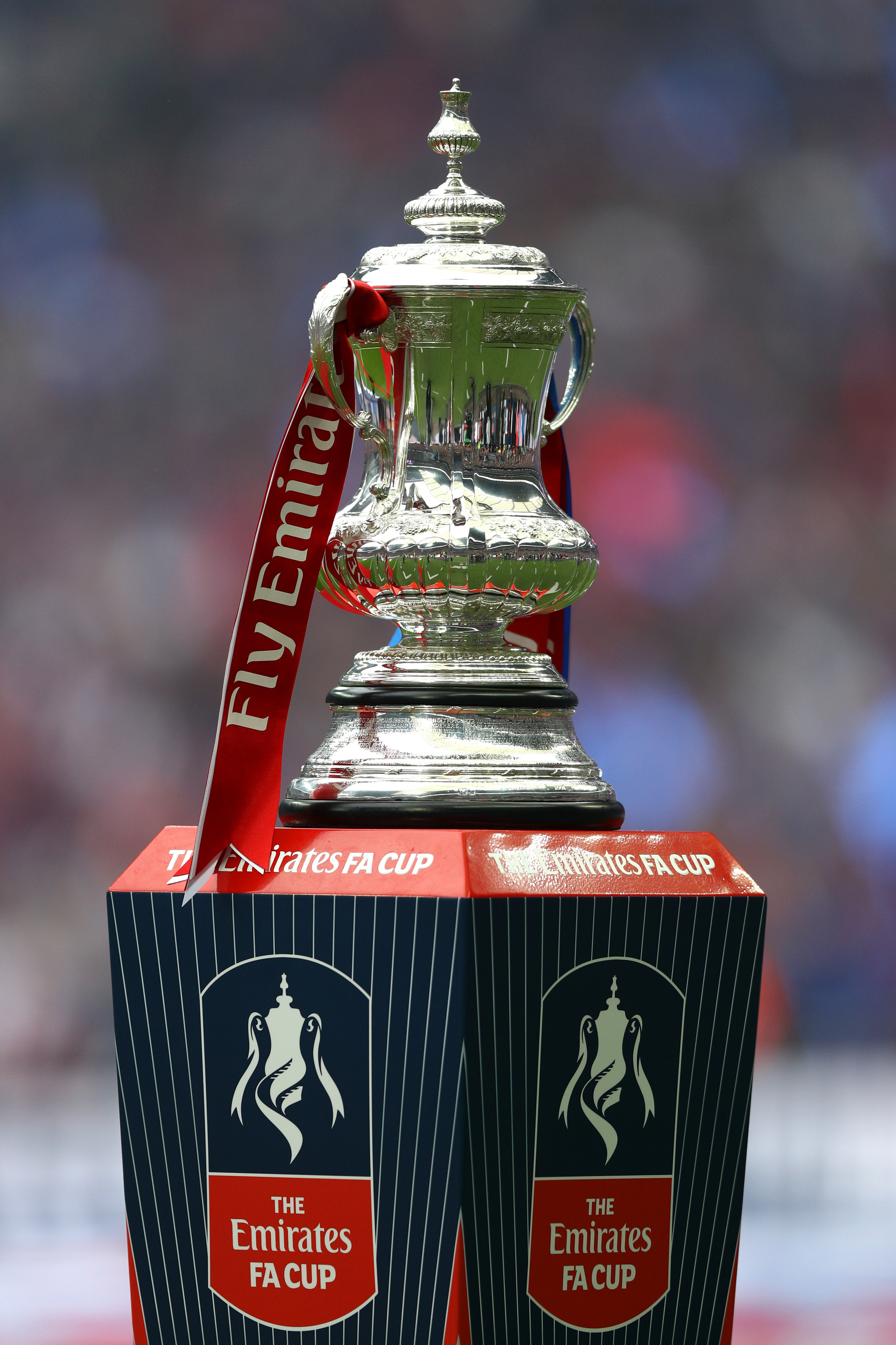 533184684-manchester-united-v-crystal-palace-the-emirates-fa-cup-final