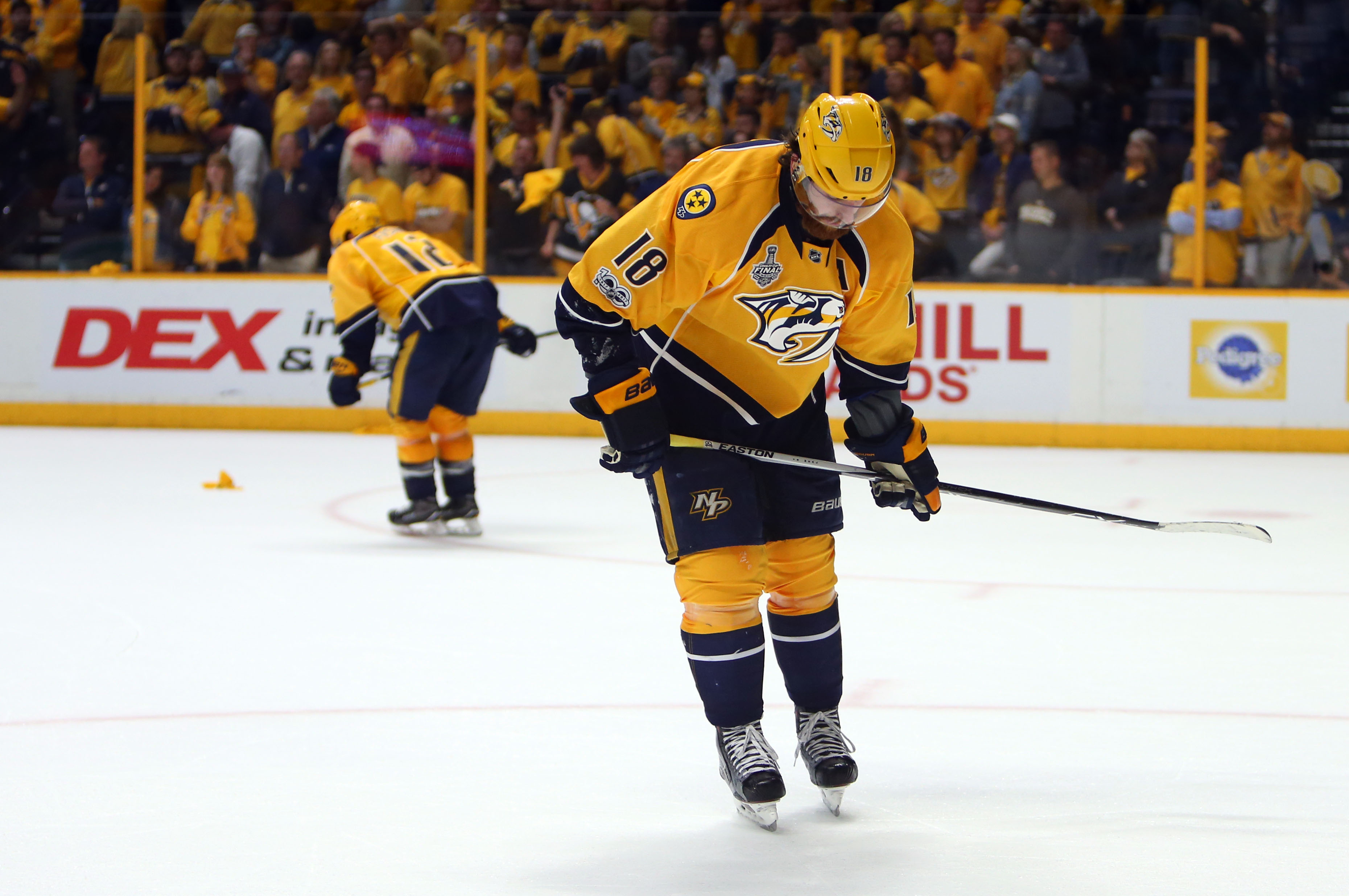 Young Predators fan has adorable message for team after ...