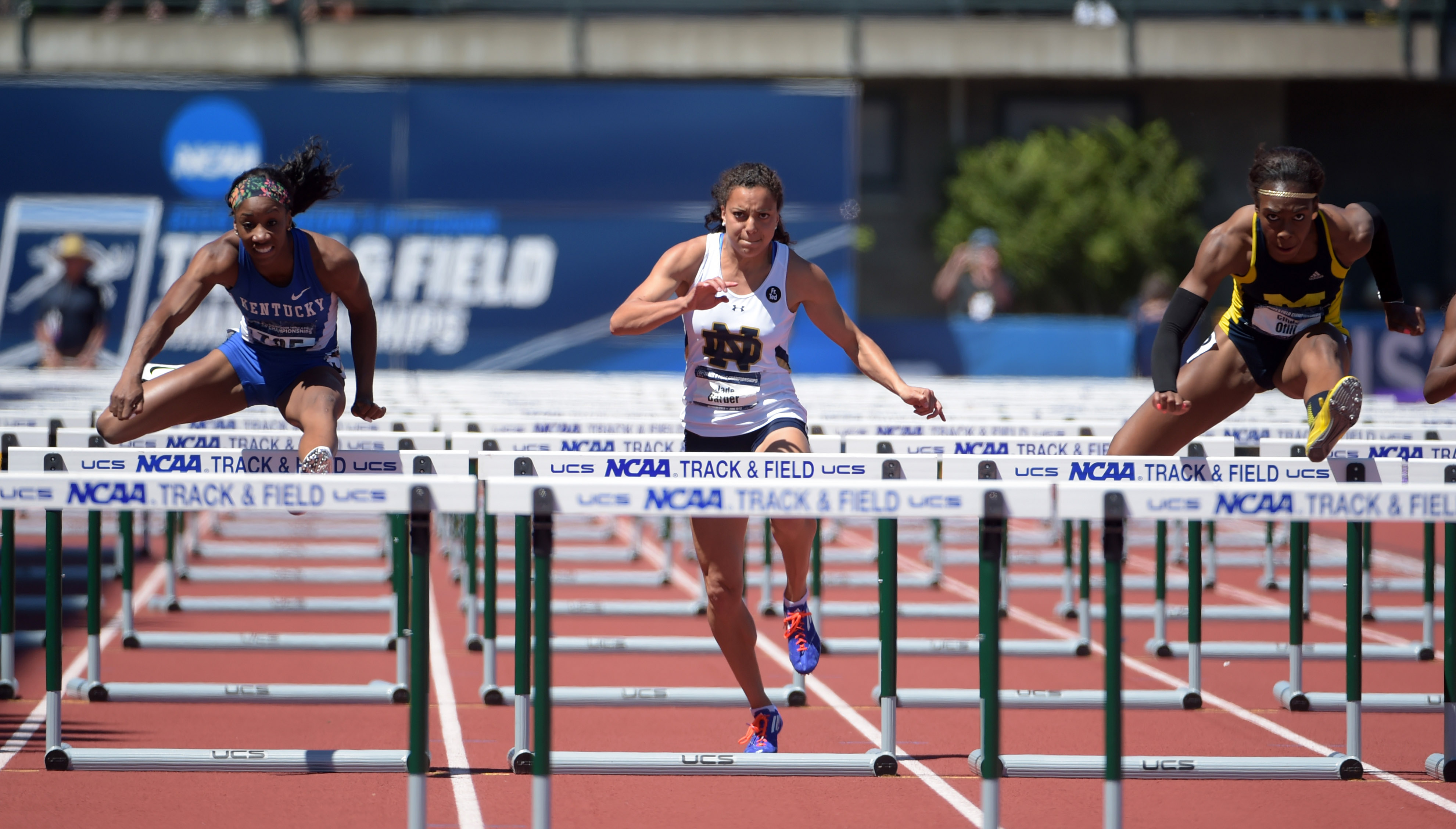8672174-track-and-field-ncaa-championships