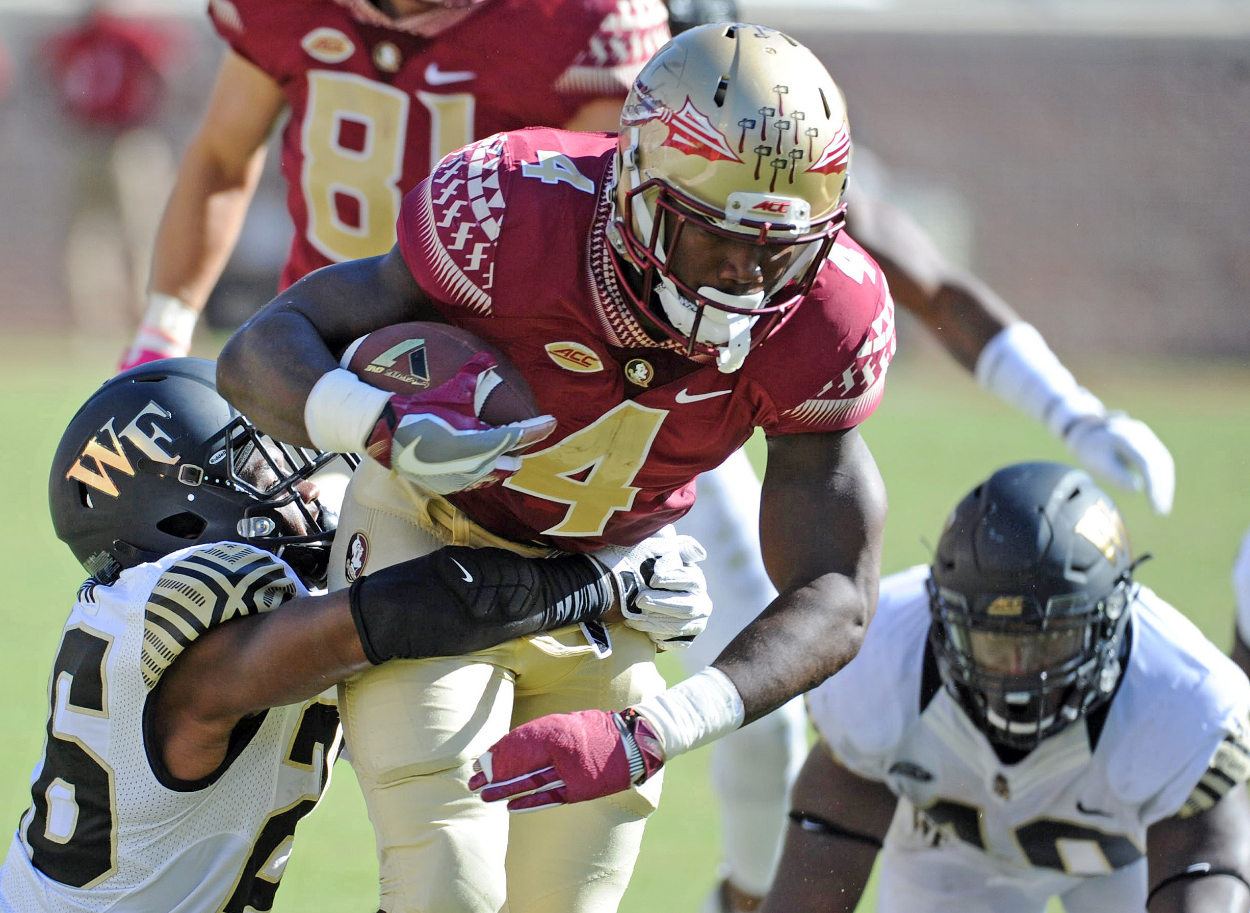 9608148-ncaa-football-wake-forest-at-florida-state