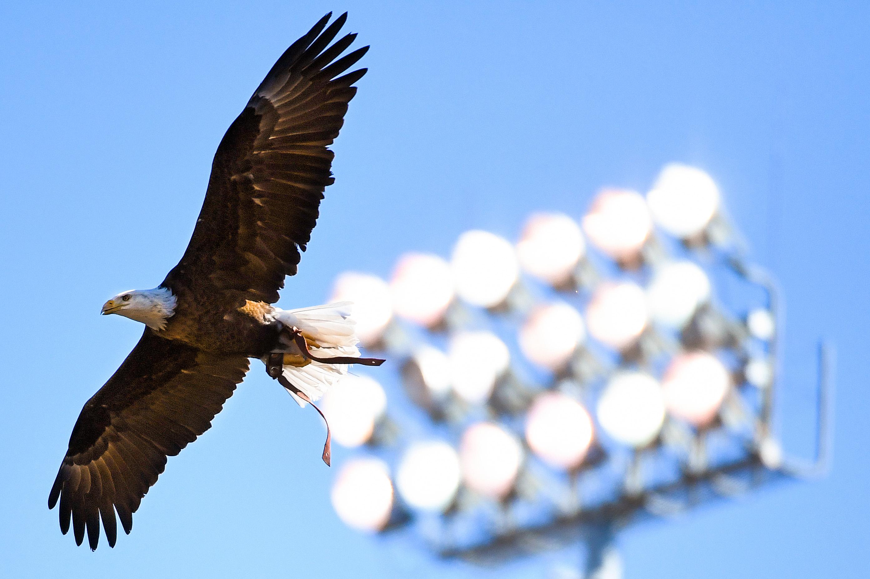 9654448-ncaa-football-vanderbilt-at-auburn