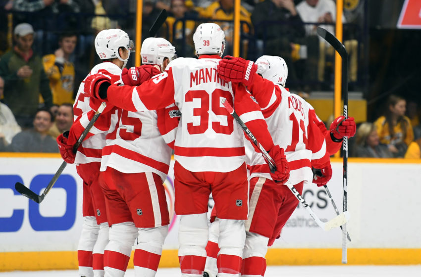 Vegas Golden Knights: Detroit Red Wings players celebrate after a goal by defenseman Mike Green (25) during the first period against the Nashville Predators at Bridgestone Arena. Mandatory Credit: Christopher Hanewinckel-USA TODAY Sports