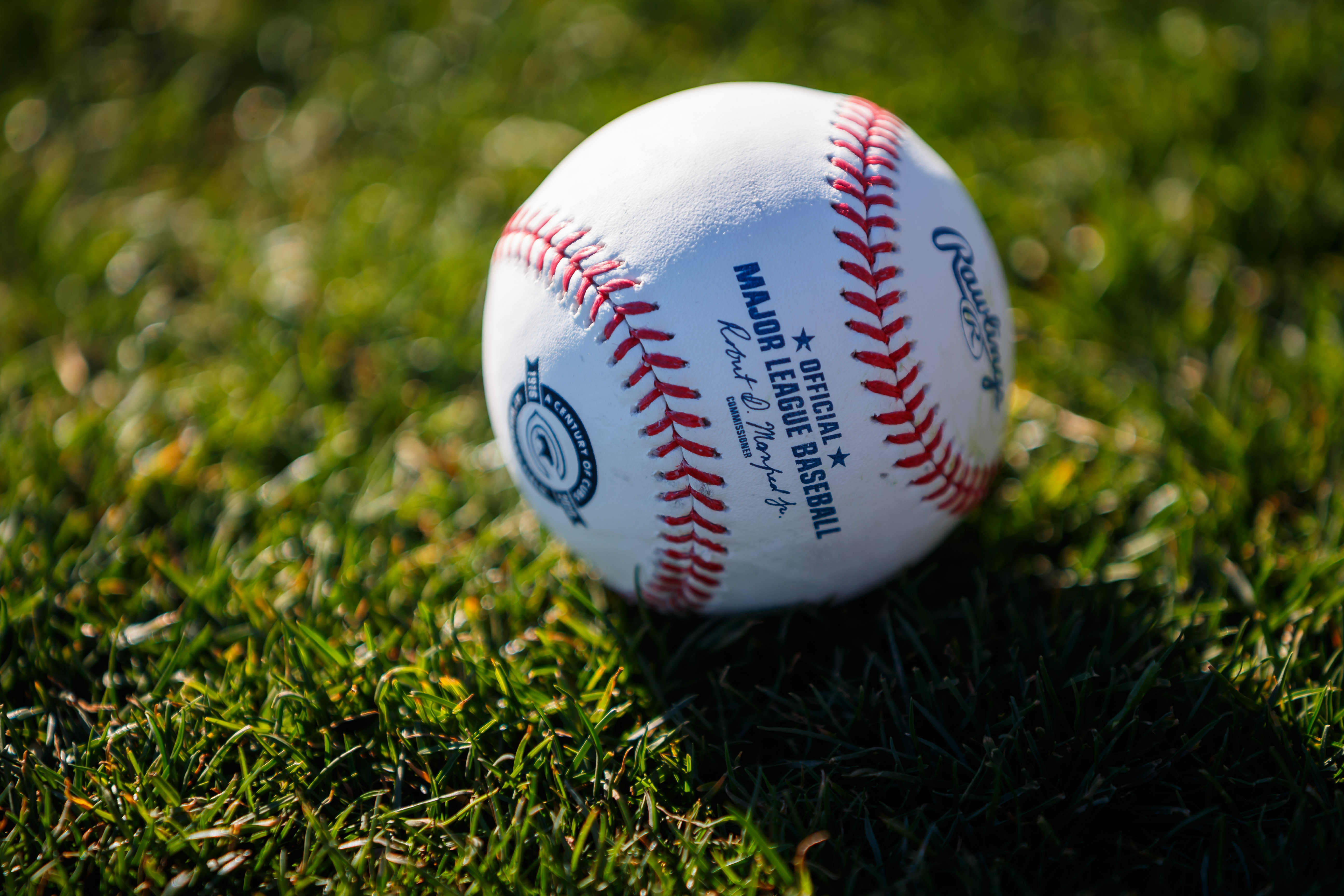 9879123-mlb-chicago-cubs-workouts