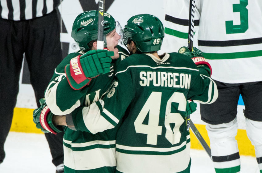 Feb 16, 2017; Saint Paul, MN, USA; Minnesota Wild defenseman Jared Spurgeon (46) celebrates his goal with defenseman Ryan Suter (20) during the third period against the Dallas Stars at Xcel Energy Center. The Wild defeated the Stars 3-1. Mandatory Credit: Brace Hemmelgarn-USA TODAY Sports