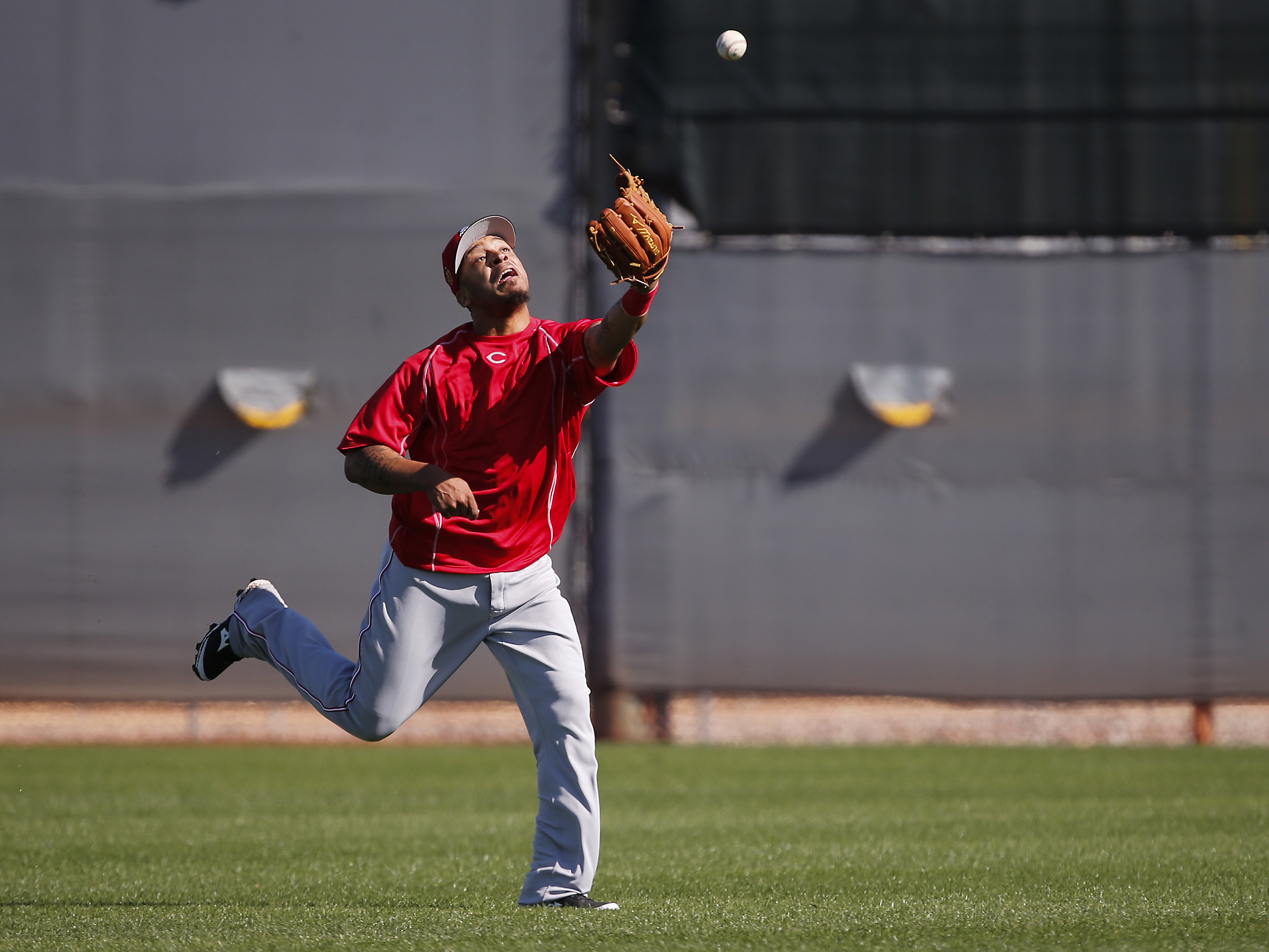 9890135-sports-cincinnati-reds-workouts