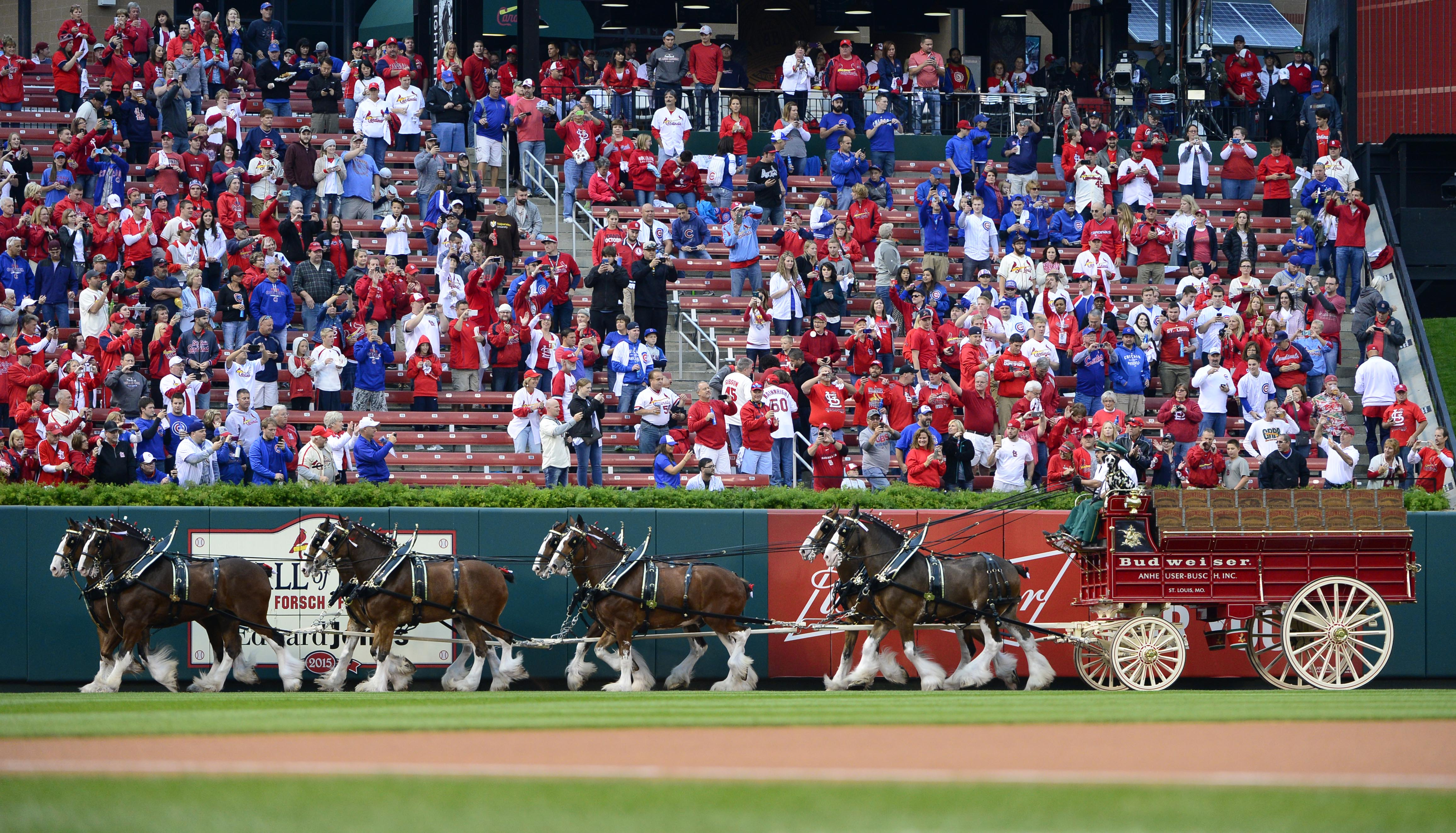 8850249-mlb-nlds-chicago-cubs-at-st.-louis-cardinals