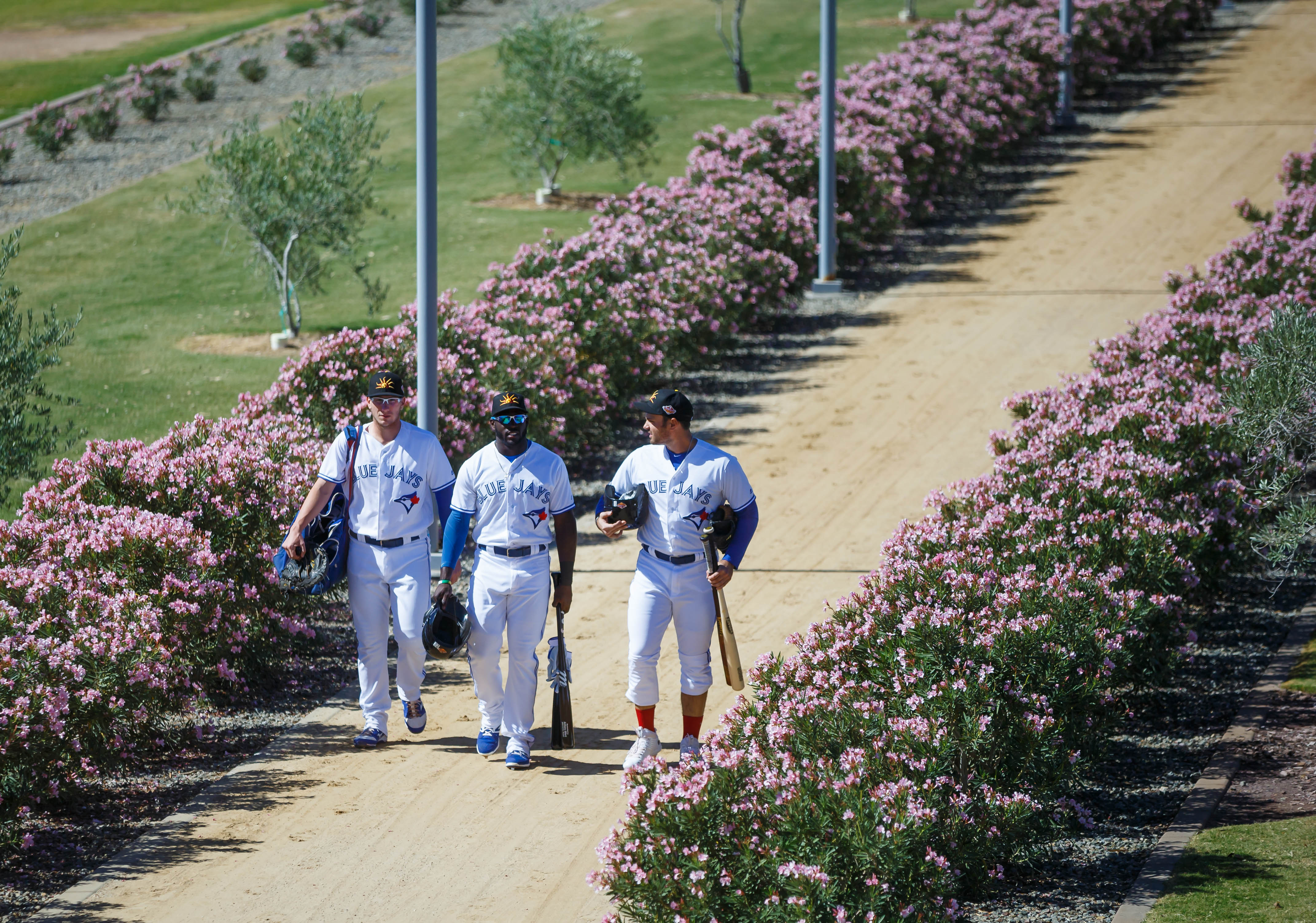 9616269-minor-league-baseball-arizona-fall-league-scottsdale-scorpions-at-mesa-solar-sox