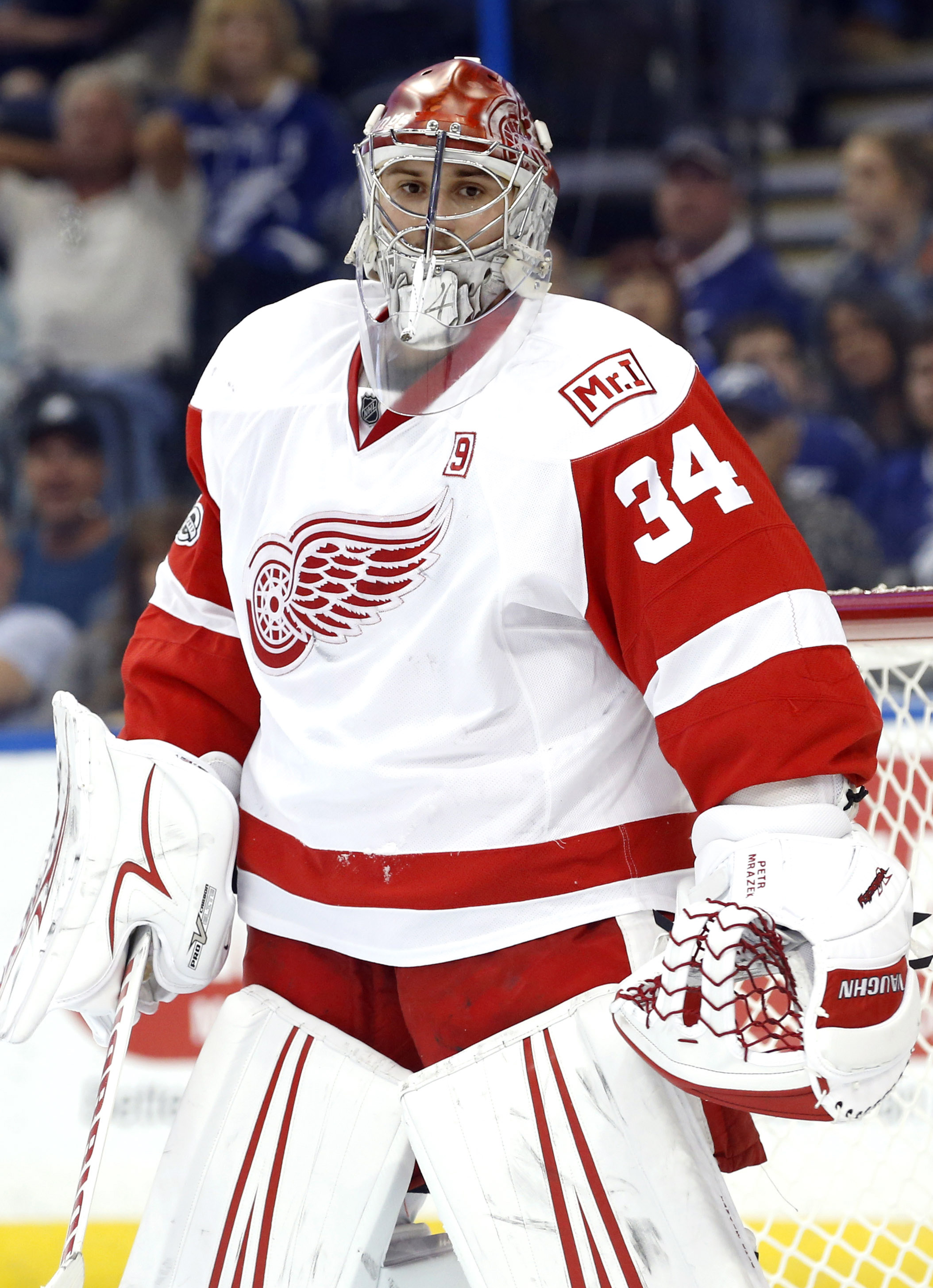 Detroit Red Wings: Protection list revealed for Expansion ...